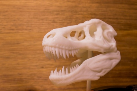 T Rex Printed white